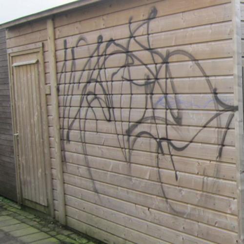 Graffitiverwijderaar Multi 500ml
